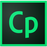 Adobe Captivate 2019: The Essentials (2nd Edition)