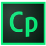 Adobe Captivate Consulting or Mentoring
